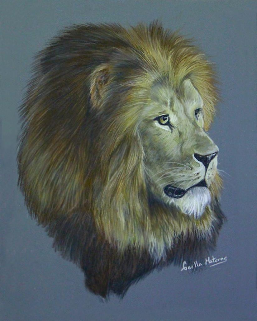 lion print2