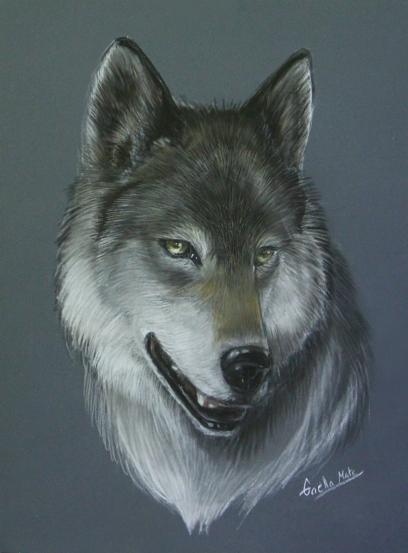 Wolf-Pastel
