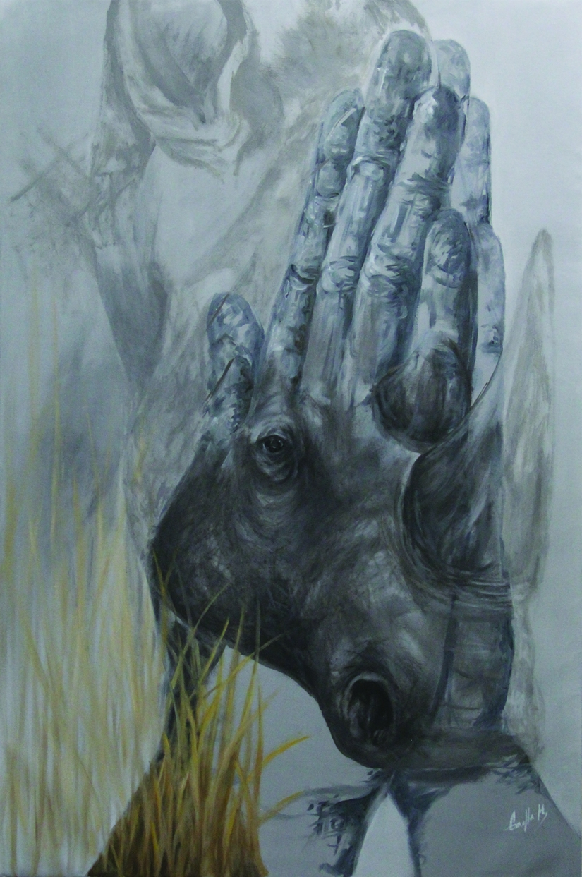 rhino hand series